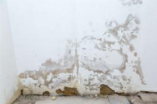 Bevorzugt Feuchtigkeit im Haus – Was ist daran so gefährlich für uns? UU33