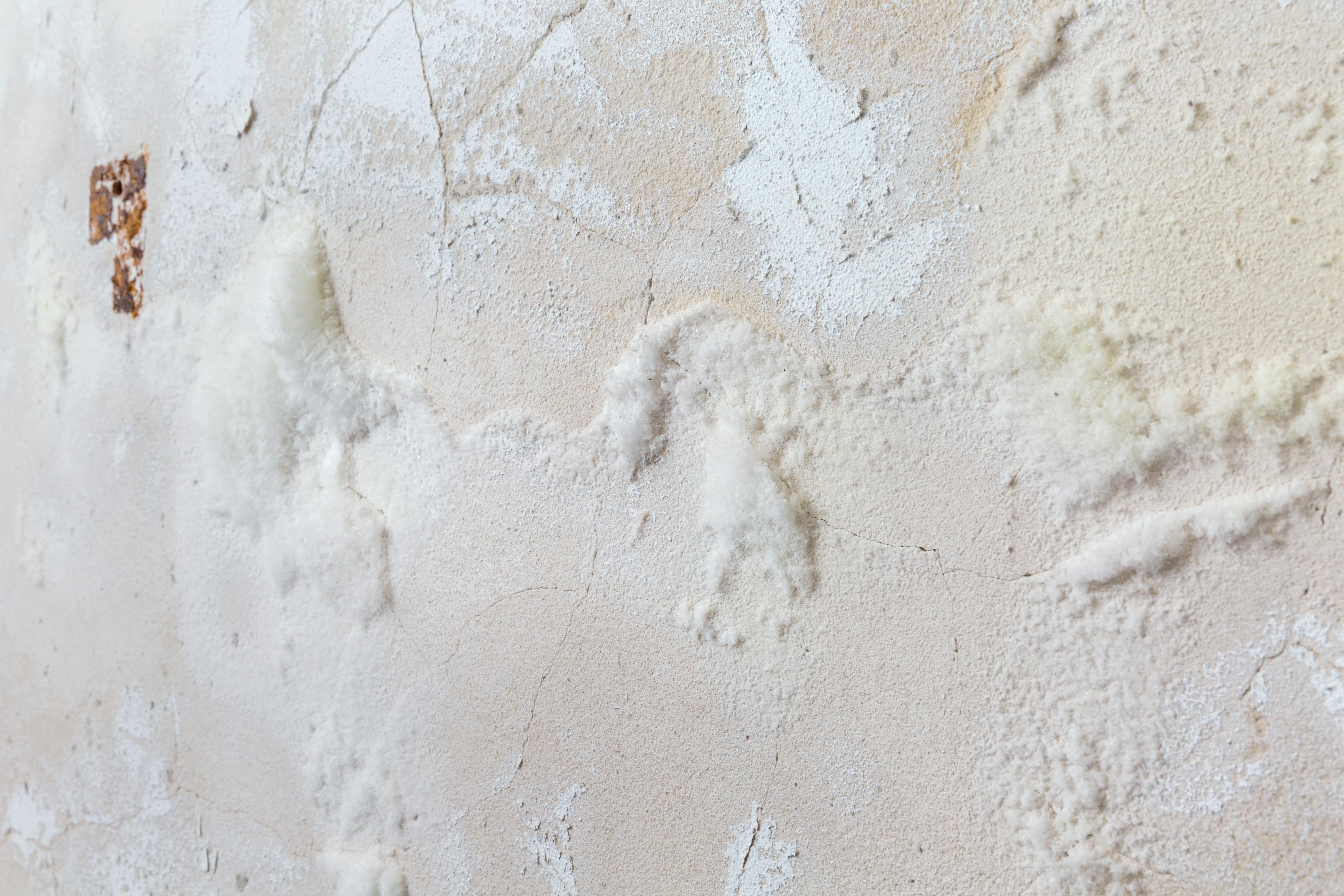 Extrem Salzausblühungen erkennen und die Ursache beseitigen GH56